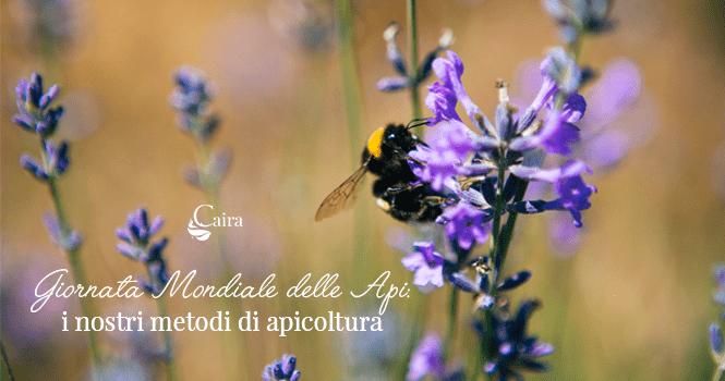 giornata mondiale delle api 2020